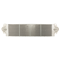Kachelradiateur, interieurverwarming NRF