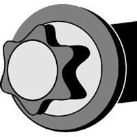 corteco Cilinderkopbouten RENAULT,DACIA 016213B 110563297Rx5,110565986Rx5,7700738986 Cilinderkopbout 7700738987,7703053929x10