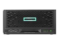 HP Enterprise ProLiant MicroServer - P16005-421