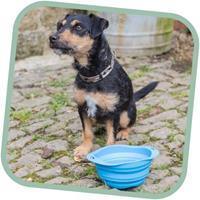Beco Pets Beco Opvouwbare Hondenbak, handig voor onderweg!