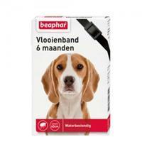 Beaphar Vlooienband Hond - 6 maanden - Zwart