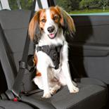 hondentuig auto dog protect zwart