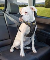 kurgo Hondentuig Impact Dog Car Harness
