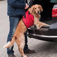 Animal Gear Europe GmbH Honden-draaghulp 'Helping Harness'