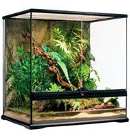 Exo Terra Glasterrarium 60x45x60 Incl Achterwand