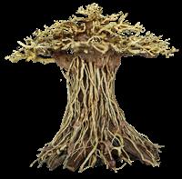 Superfish Bonsai Mushroom Large