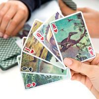 Kikkerland 3D speelkaarten - Dinosaurus