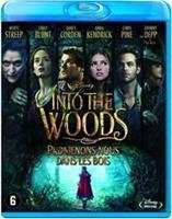 Disney Into the Woods