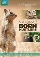 BBC earth - Natural born hustlers (DVD)
