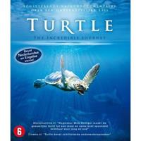 Turtle the Incredible Journey
