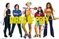 GB eye Birds of Prey Poster Pack Group 61 x 91 cm (5)