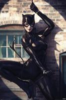 Pyramid International DC Comics Poster Pack Catwoman Spot Light 61 x 91 cm (5)