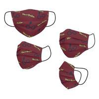 Cerdá Harry Potter Face Mask Glasses