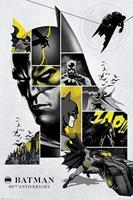 Pyramid Batman 80th Anniversary Poster 61x91,5cm