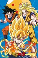 GBeye Dragon Ball Z 3 Gokus Poster 61x91,5cm