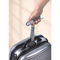 Soehnle 66172 Travel Digitale Bagageweegschaal RVS