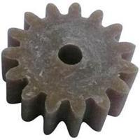 Hout, Kunststof Modelcraft Soort module: 1.0 Aantal tanden: 15 1 stuks