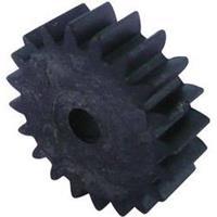 Hout, Kunststof Modelcraft Soort module: 1.0 Aantal tanden: 20 1 stuks