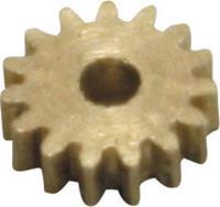 Messing Micro-tandwiel Module 0.2 Z12S Met tandwiel 1 stuks