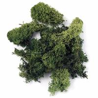 Rayher hobby materialen Decoratie mos donkergroen 100 gram