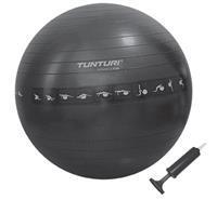 Tunturi Gymball