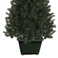 Bellatio Vierkante kerstboomvoet groen voor een echte kerstboom Groen