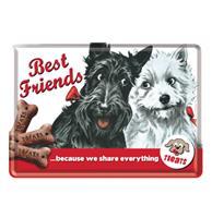 Fiftiesstore Metalen Postkaart Best Friends Because We Share Everything