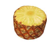 Sunvibes tuinpoef ananas 58 x 50 cm