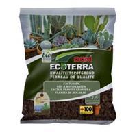 DCM Ecoterra cactus en vetplanten potgrond - 2,5 L