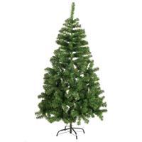 Kerstboom zilverspar 60 cm