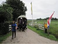 Boerderijcamping De Jobinghoeve - Nederland - Drenthe - Grolloo