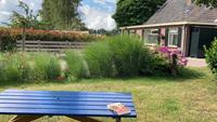 B&B Huize De Veldwachter - Nederland - Overijssel - Den Velde