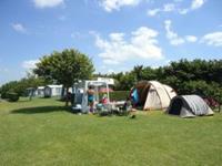 Minicamping Het Koolswegje - Nederland - Zeeland - Cadzand