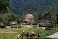 Bouwsteen 8 dagen Flores en Komodo, van Maumere naar Labuan Bajo en Komodo - Indonesië - Flores & Komodo