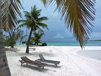 Individuele rondreis Sri Lanka en de Malediven