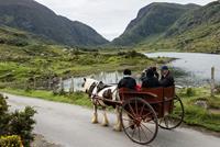 Killarney jaunting car tours