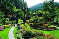 Butchart Gardens - Victoria