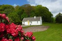 Killarney Lakeland Cottages - Killarney