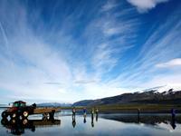 Ingólfshöfði vogelkaap excursie