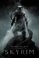 Skyrim Dragonborn Poster 61x91,5cm