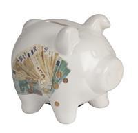 Balgoed Spaarvarken met euro biljetten