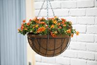 Nature Hanging Basket H15.5xØ35cm
