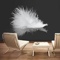 Fotobehang - Witte veer , zwart