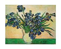 PGM Vincent Van Gogh - Iris Strauss, 1890 Kunstdruk 50x40cm