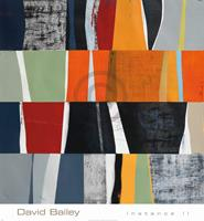 PGM David Bailey - Instance II Kunstdruk 61x66cm