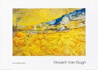 PGM Vincent Van Gogh - Il Mietitore Kunstdruk 70x50cm