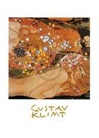 PGM Gustav Klimt - Acqua Mossa Kunstdruk 50x70cm