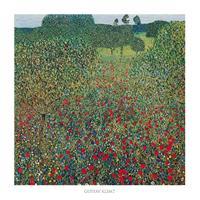 PGM Gustav Klimt - Campo di papaveri Kunstdruk 70x70cm