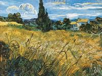 PGM Vincent Van Gogh - Campo di grano Kunstdruk 80x60cm