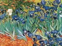 PGM Vincent Van Gogh - Iris Kunstdruk 80x60cm